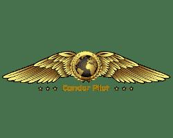 Condor Pilot. Web para escuela de pilotos