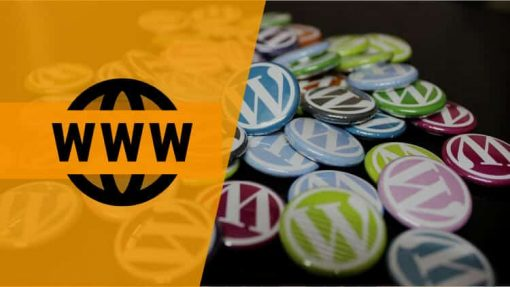 curso Wordpress Diego C Martin